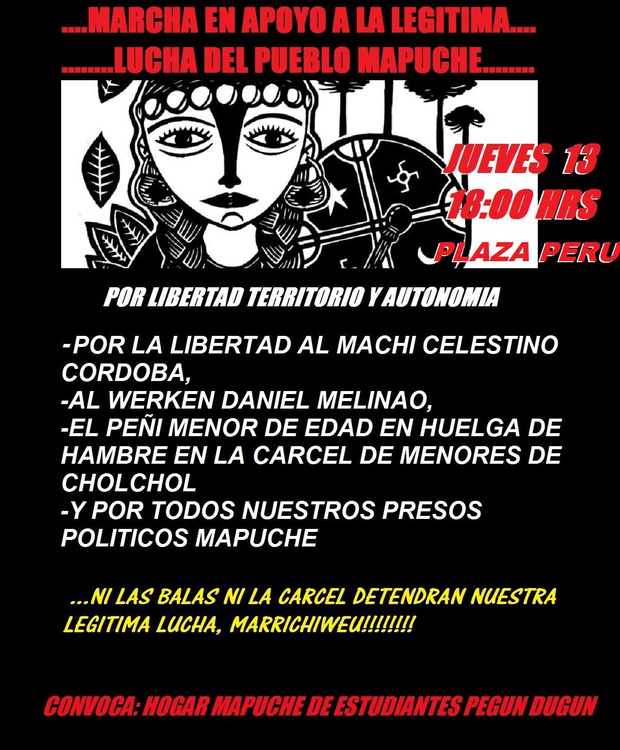 Marcha Mapuche 13 de Junio 2013 en Concepción